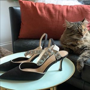 Zara kitten heel . Black with jewels pumps
